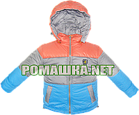 Детская весенняя, осенняя куртка р. 98 с капюшоном, подкладка 100% хлопок, внутри холлофайбер 2998 Голубой