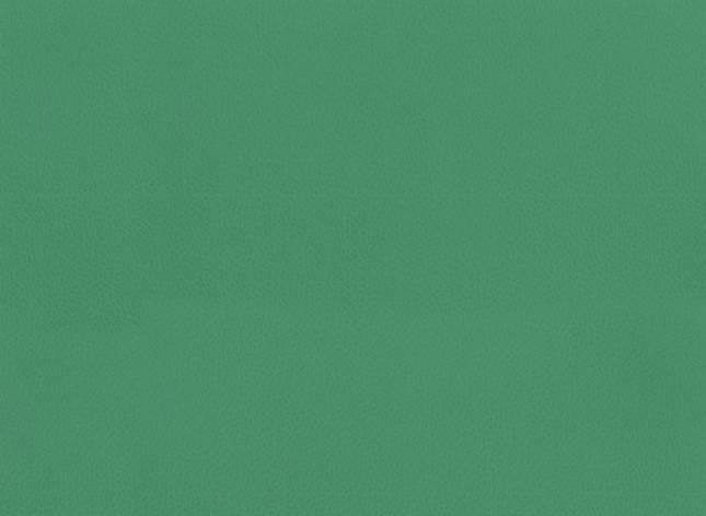 Спортивный Линолеум TARKETT OMNISPORTS V65  FIELD GREEN , фото 2