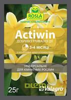 АКТИВИН 25 г - удобрение для подпитки комнатных и садовых растений, роз и цветущих растений