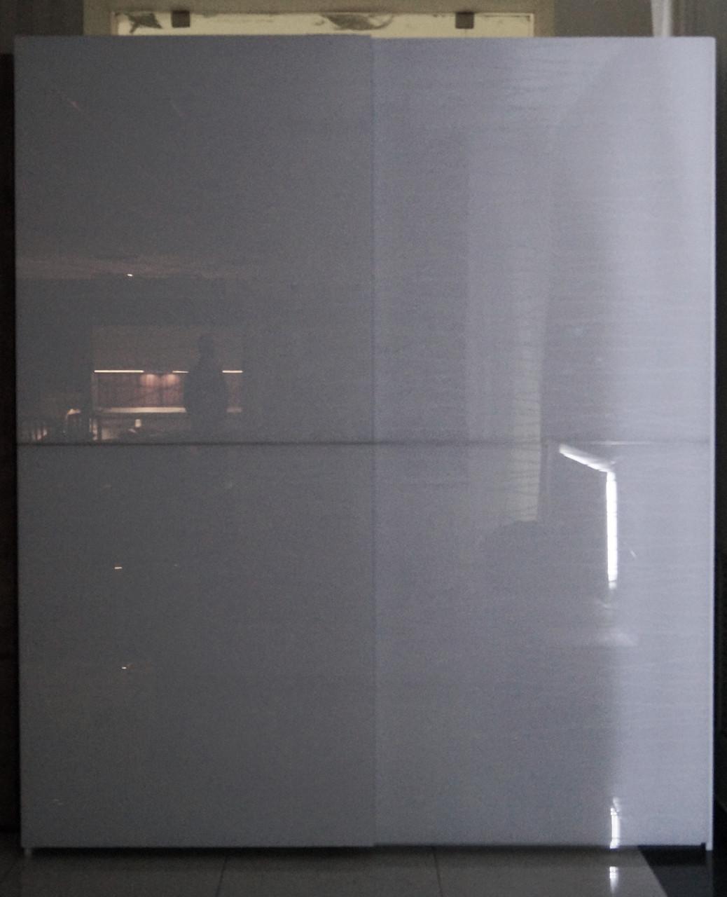 Шкаф-купе Silver rains