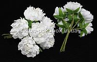 """Цветок """"Хризантема Элит""""   (цена за букет из 6 шт). Цвет - белый."""