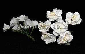"Цветок ""Весенник""   (цена за букет из 6 шт) Белый цвет"