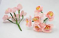 """Цветок """"Весенник""""   (цена за букет из 6 шт) цвет - нежный персик"""