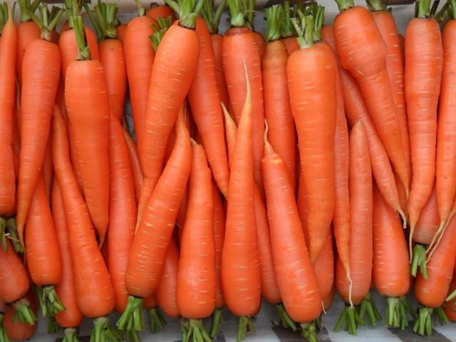 Семена моркови (с первых рук, оптом от производителя)