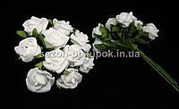 Роза кучерявая 1,8 см (Цена за букет из 10 шт) Белый цвет