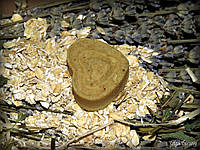Овсяные гидрофильные плиточки (молочко) для умывания
