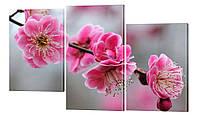 Модульная картина 4 цветы вишни