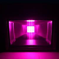 Светодиодный фитопрожектор SL-30G 30W IP65 (full spectrum led) Код.58578