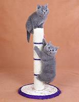 Когтеточки маленькие для котов и кошек