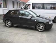 Боковые накладки на пороги для Audi A3(8L)