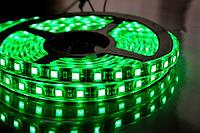 Светодиодная лента 3528 герметичная Зеленый