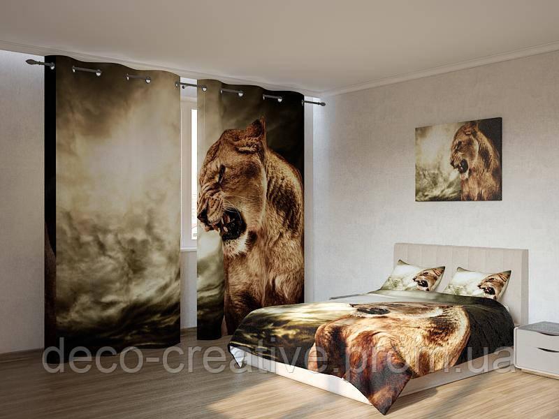 Фотокомплект грозная львица