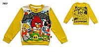 Кофта Angry Birds для мальчика. 95 см