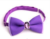 Бабочка галстук фиолетовая с камнем Версаче
