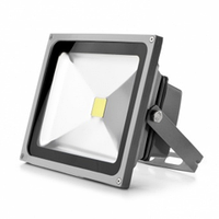 LED прожектор SPOTLIGHT WHITE 30W