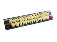 Набор зубов Yamahachi 28/1 (A3.5,S4)