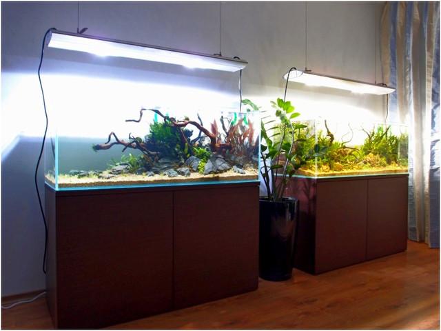 Изготавливаем аквариумы из ультрапрозрачного стекла