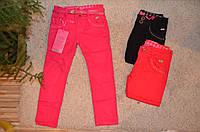 Котоновые брюки для девочек оптом 116-146 см