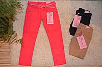 Котоновые брюки для девочек оптом 134-164  см