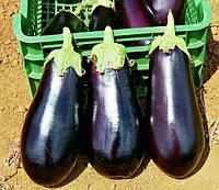 КЛАССИК F1  - семена баклажана 5 грамм, CLAUSE