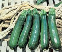 ТАРМИНО F1 - семена кабачка 500 семян, CLAUSE