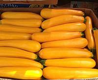 САНЛАЙТ F1 - семена кабачка, 1 000 семян, CLAUSE, фото 1
