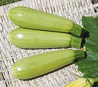 ДОНИЯ F1 - семена кабачка, 500 семян, CLAUSE, фото 1