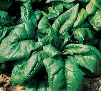ЛАГОС F1 - семена шпината, 250 грамм, CLAUSE
