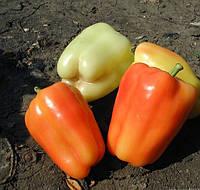 ФЛАМИНГО F1  - семена сладкого перца, 5 грамм, CLAUSE, фото 1