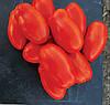РЕАКТОР F1 - семена томата детерминантного, 5 000 семян, CLAUSE