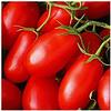 ЧИКАГО F1 - семена томата детерминантного, 5 000 семян, Syngenta