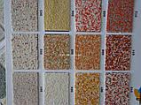 Фасадная штукатурка мозаичная Примус цвет 113, фото 6
