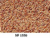 1550 Kale DREWA