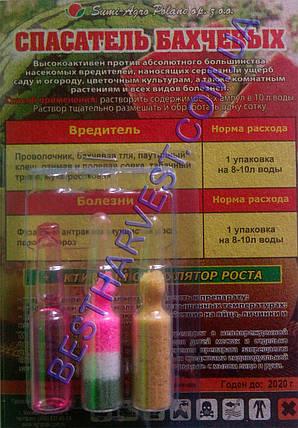 Спасатель бахчевых 3 ампулы (на 1 сотку), фото 2
