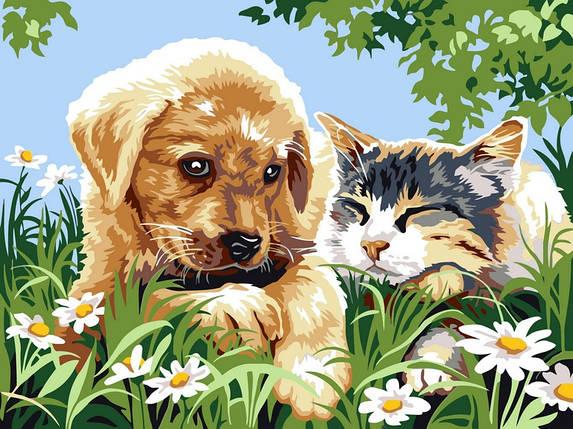 Раскраска по номерам Верные друзья, фото 2