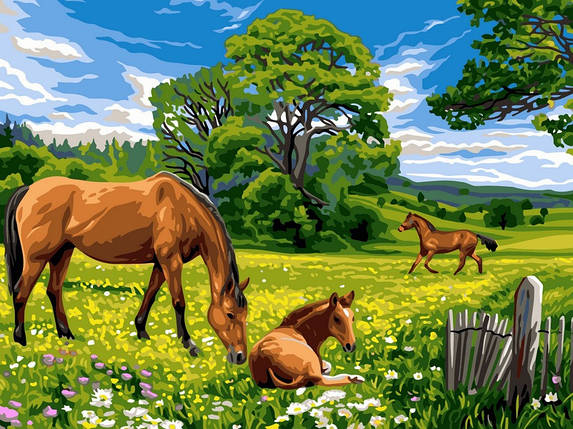 Раскраска по номерам Солнечный луг, фото 2