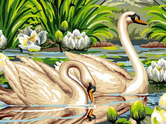 Раскраска по номерам Лебеди и лотосы, фото 2