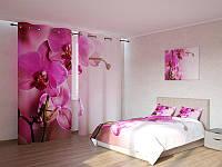 Фотокомплект ветка орхидеи