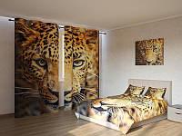 Фотокомплект леопард