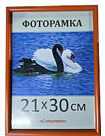 Фоторамка,пластиковая,А4,21х30, рамка,для фото, дипломов,сертификатов,грамот, вышивок 1417-61