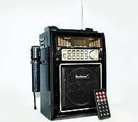 Радиоприемник New Kanon kn-511Rec,  колонка, караоке, пульт