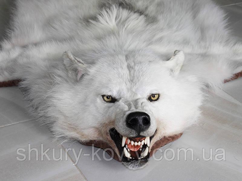 Белый полярный волк из Канады, шкуры ковры из диких животных