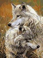 Картины по номерам 30×40 см. Степные волки Художник Люси Билодо