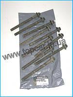 Комплект болтов головки цилидра Renault Kango 1.5dCi 03-  ОРИГИНАЛ 7701478860