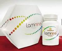 Ламинин (Laminine) - феноменальный и  эффективный. Содержит 22 аминокислоты,минералы и витамины.