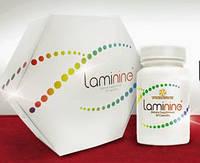 Ламинин (Laminine) - 100% органик 30 к. США. Содержит 22 аминокислоты и фактор роста фибропластов.