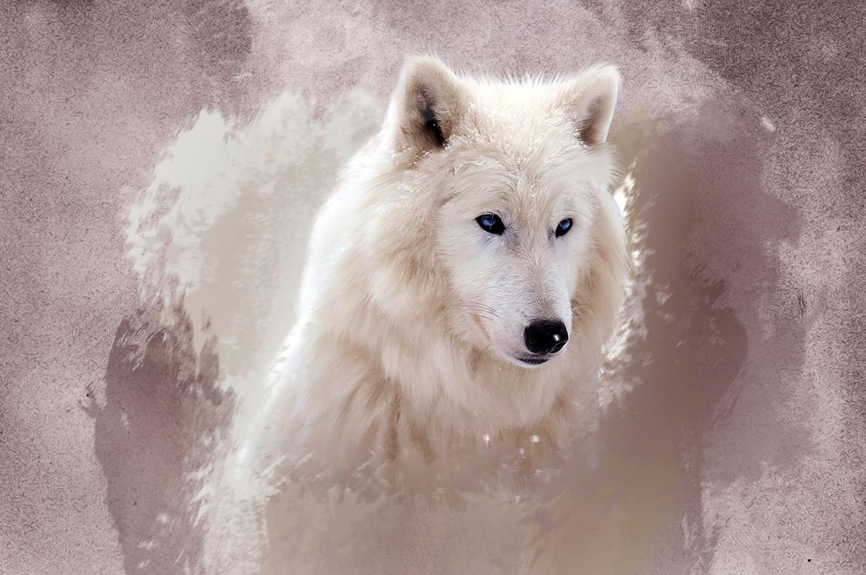 "Картина на стекле ""Белый волк"""