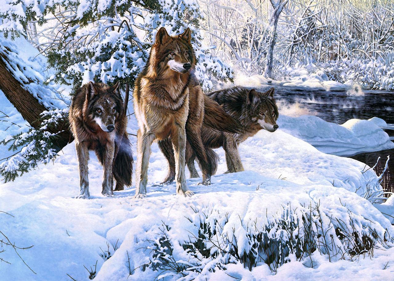 """Картина на склі """"Вовки біля річки"""""""