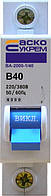 Автоматический выключатель ВА-2000 1P 40 А хар-ка B, АСКО-УКРЕМ, фото 1
