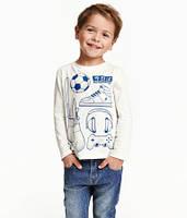 Реглан для мальчика 23-4019